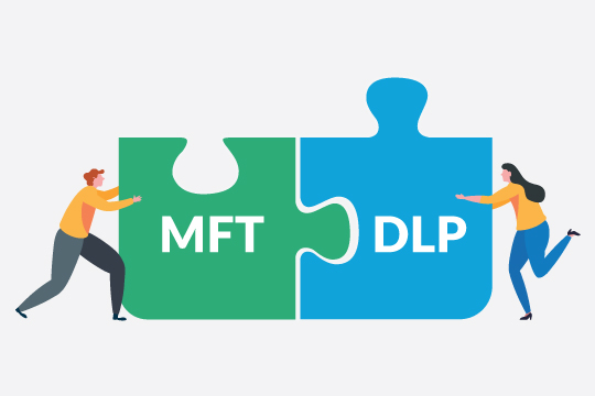 Puzzle pieces labelled MFT and DLP being fit together.