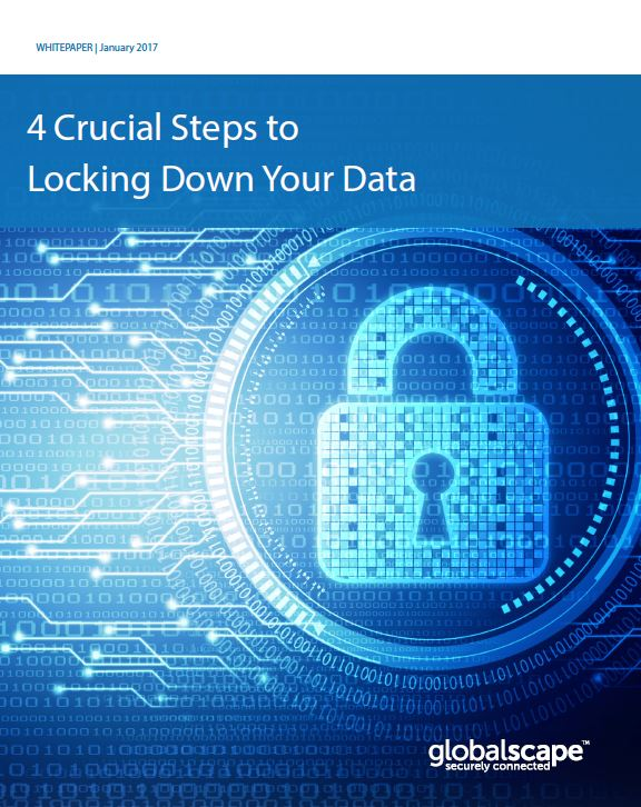 4 Crucial Steps to Locking Down Your Data