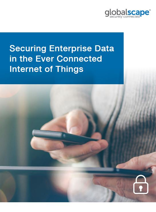 Securing Enterprise Data in the Ever Connected Internet of Things